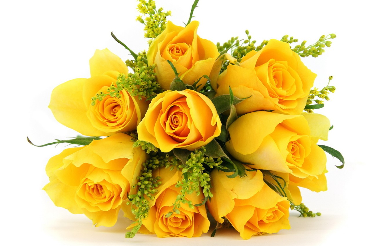 Photo wallpaper flowers, roses, bouquet, yellow
