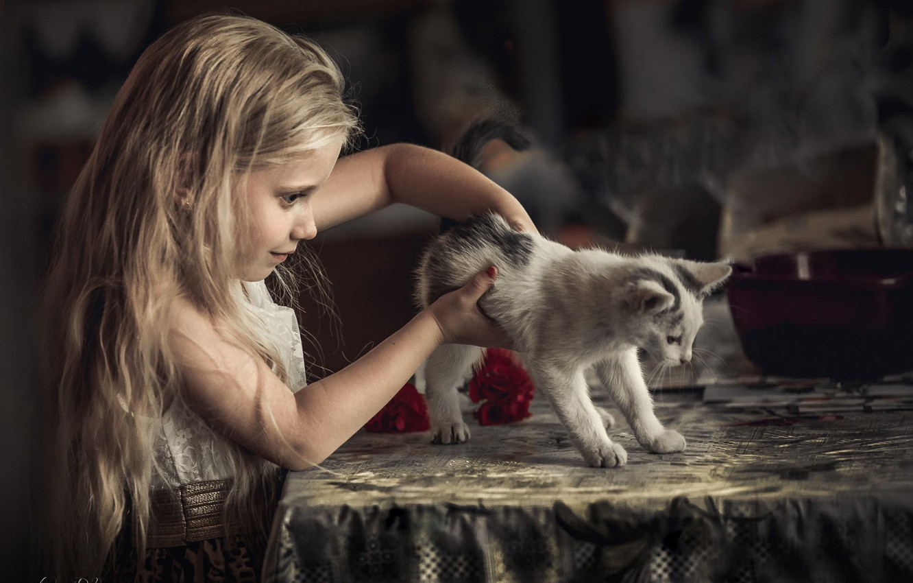 Photo wallpaper cat, child, girl