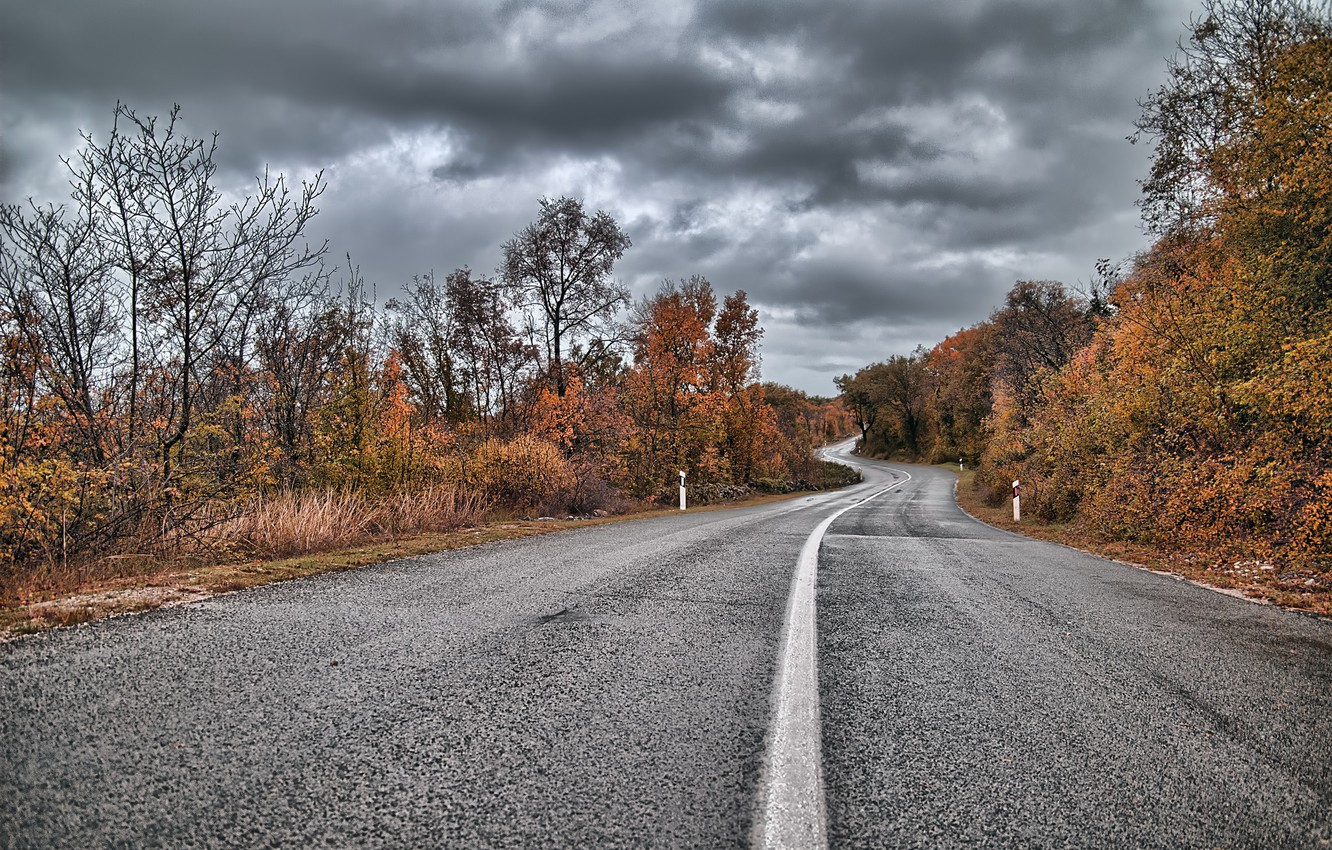 Photo wallpaper road, autumn, cloudy