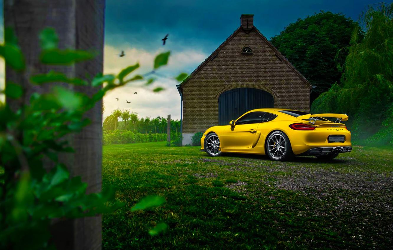 Photo wallpaper Porsche, Cayman, Car, Nature, Color, Yellow, Summer, GT4, Rear