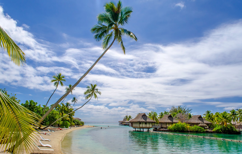 Photo wallpaper sea, beach, tropics, palm trees, houses, summer, sunshine, beach, sea, ocean, paradise, vacation, palms, tropical, ...