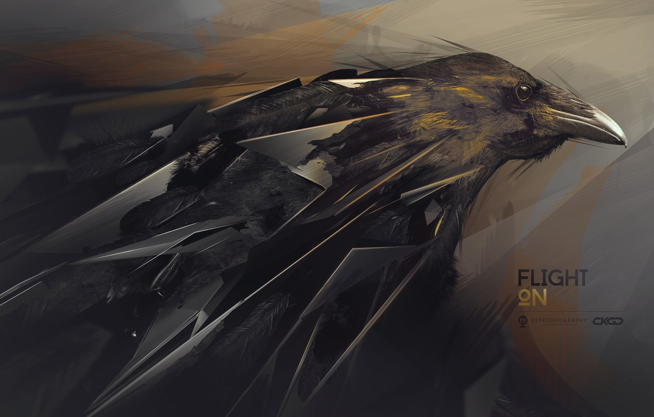 Photo wallpaper abstraction, Raven, desktopography, hq Wallpapers, flight on