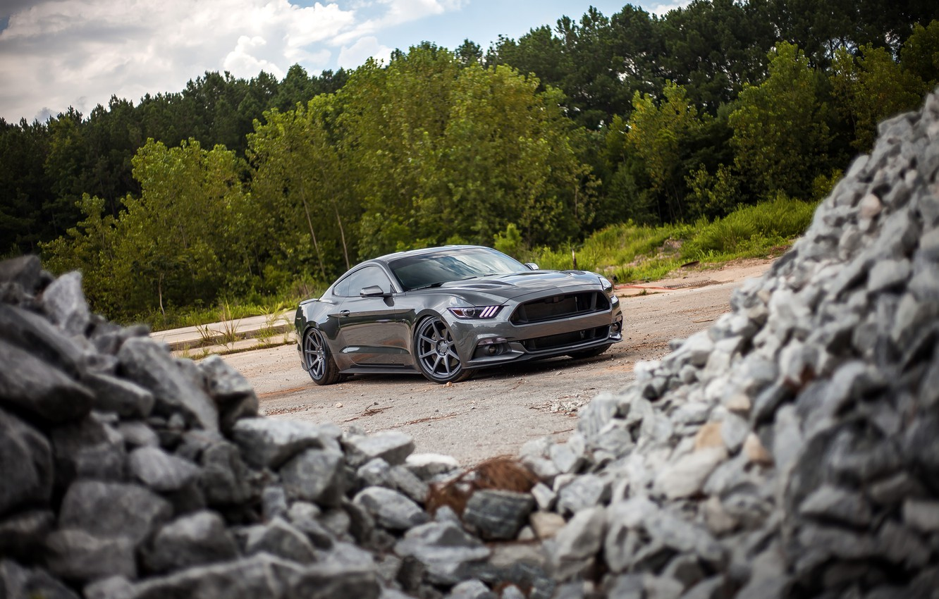 Photo wallpaper Mustang, Ford, Stones, 2015, 0.5