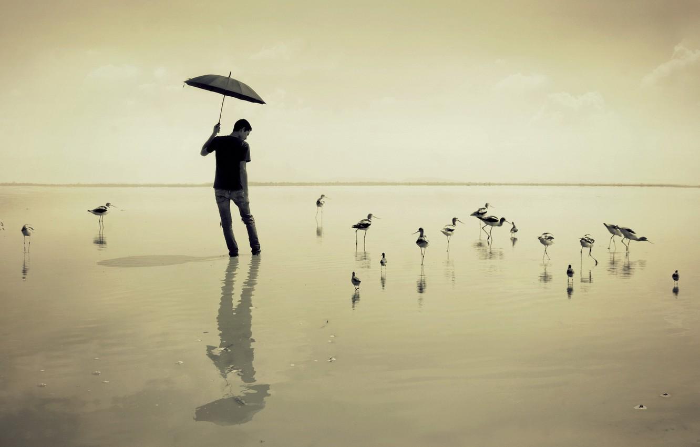 Photo wallpaper sea, birds, umbrella, guy