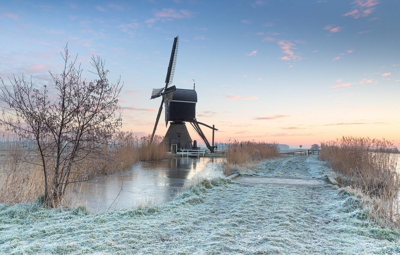 Photo wallpaper field, morning, mill