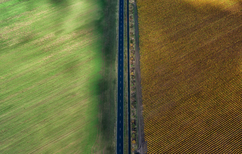 Photo wallpaper road, field, farm