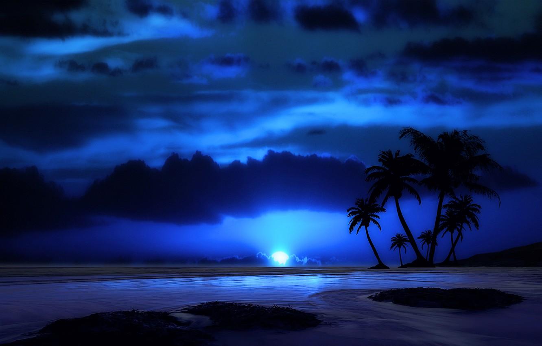 Photo wallpaper sea, the sky, clouds, landscape, night, tropics, Palma, the moon, the evening