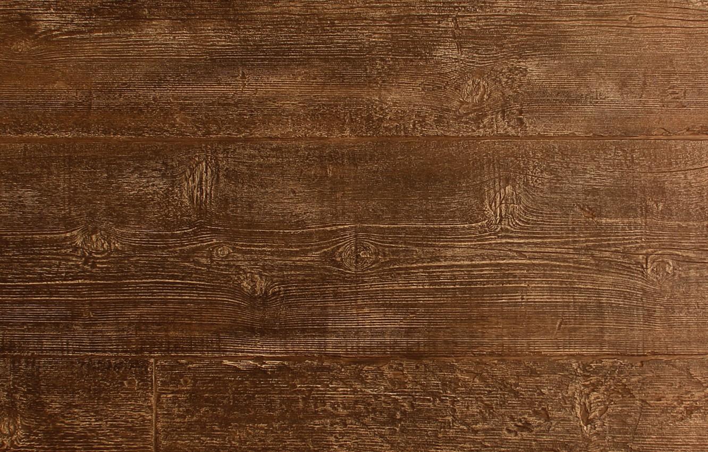 Photo wallpaper light, wood, texture, brown
