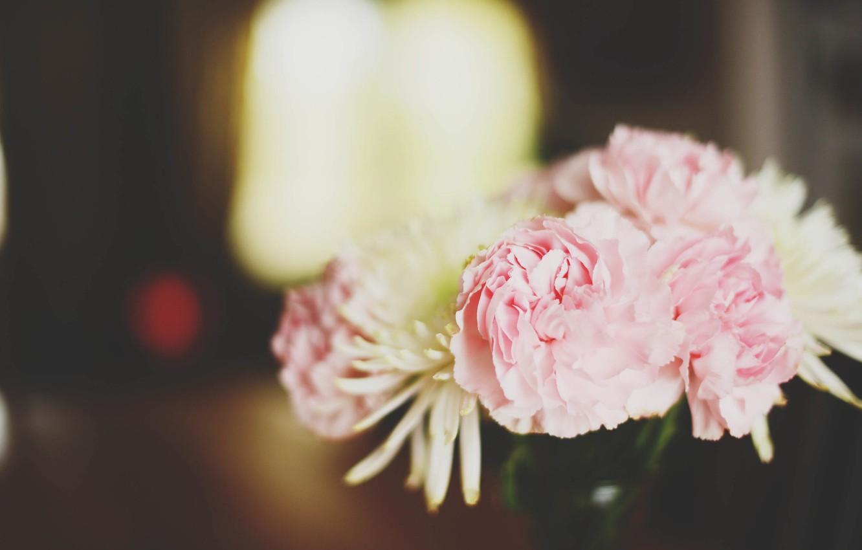 Photo wallpaper flowers, peonies, asters