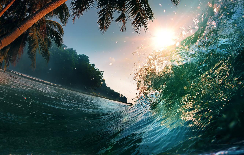 Photo wallpaper sea, wave, water, landscape, nature, palm trees, the ocean, splash, waves, sea, landscape, nature, water, …