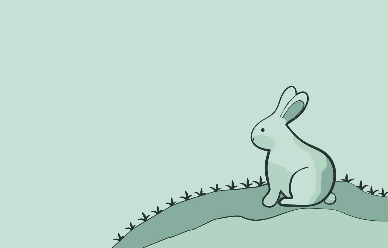 Photo wallpaper hare, minimalism, rabbit, rabbit