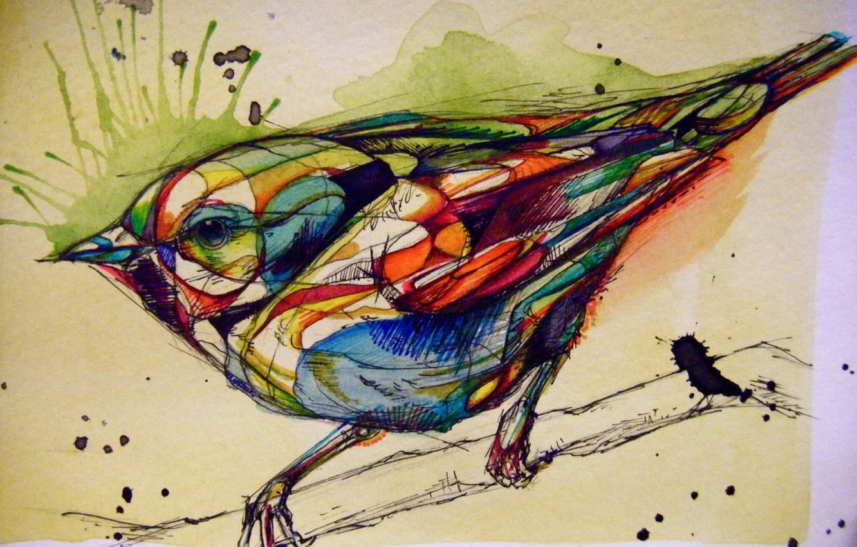 Photo wallpaper bird, paint, figure, graphics, Sparrow, mascara, rascasse