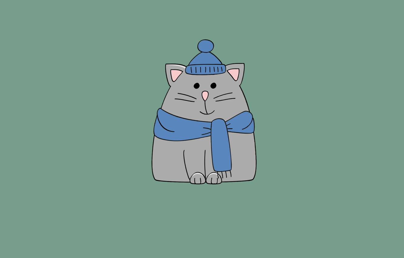 Wallpaper Cat Hat Minimalism Scarf Cat Images For Desktop