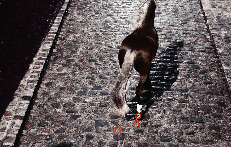 Photo wallpaper Horse, pavers, horseshoe