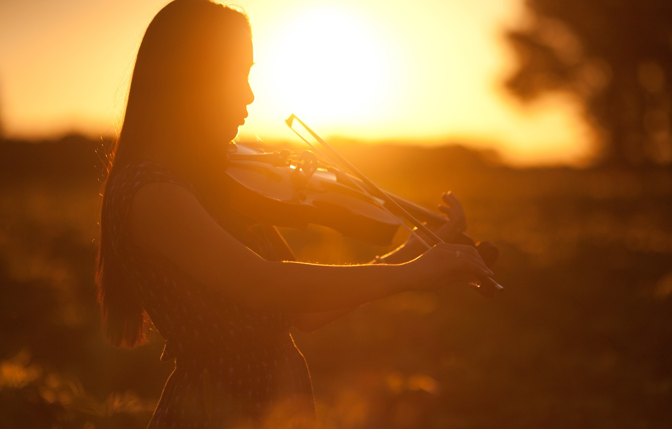 Photo wallpaper girl, sunset, violin, profile, musical instrument
