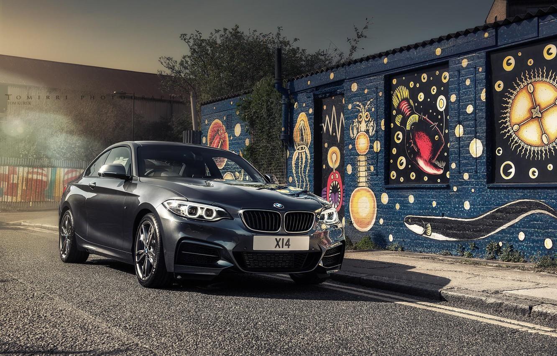 Photo wallpaper BMW, Black, BMW, Lights, F22, Black, Coupe, M235i