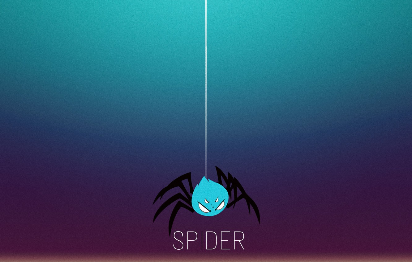 Photo wallpaper insects, background, Wallpaper, Desk, spider, minimal, spider, saver, FULL-HD