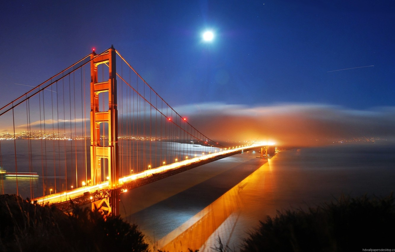 Photo wallpaper Sea, The city, River, City lights, Ocean, The cost, The river above the bridge