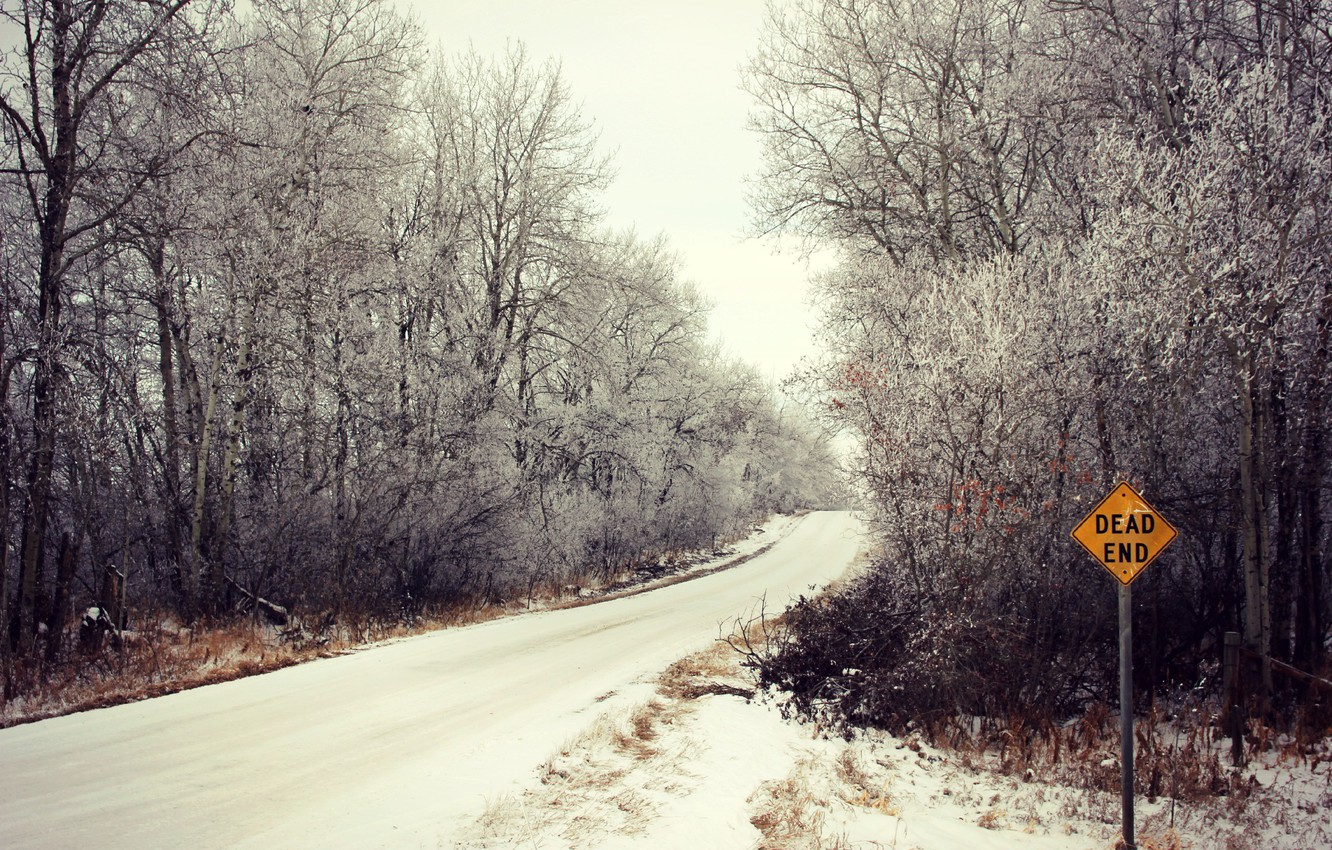 Photo wallpaper winter, road, forest, sign
