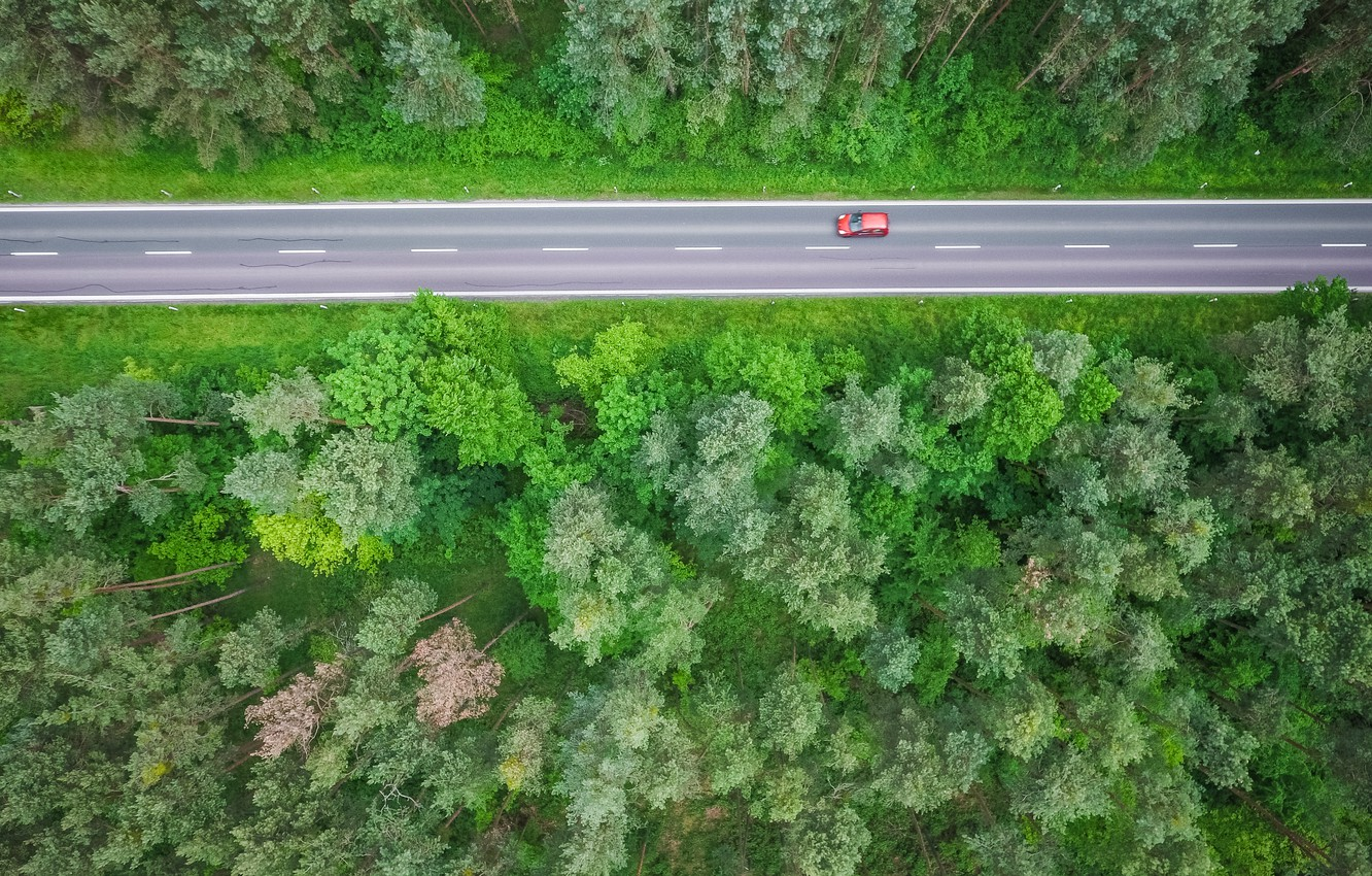 Photo wallpaper road, forest, track, red car