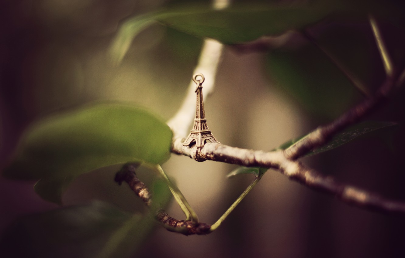 Photo wallpaper leaves, branches, Eiffel tower, suspension, figure