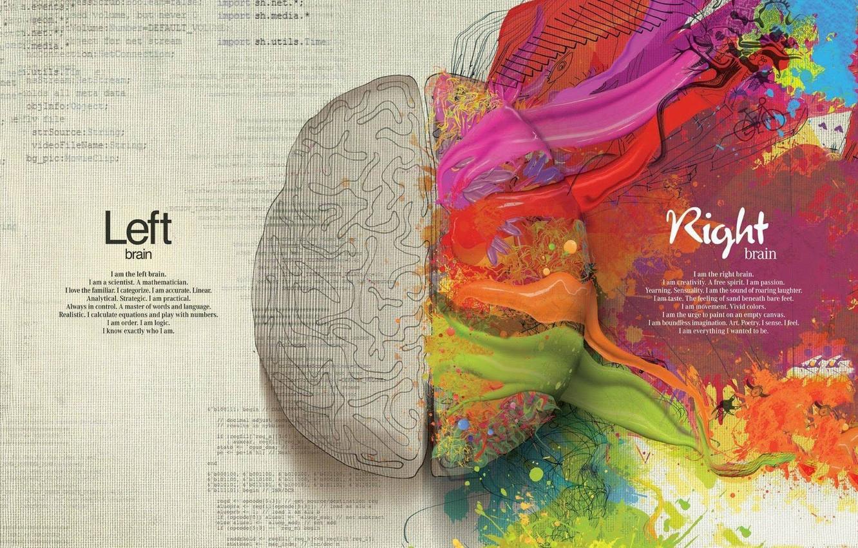 Photo wallpaper creative, paint, brain