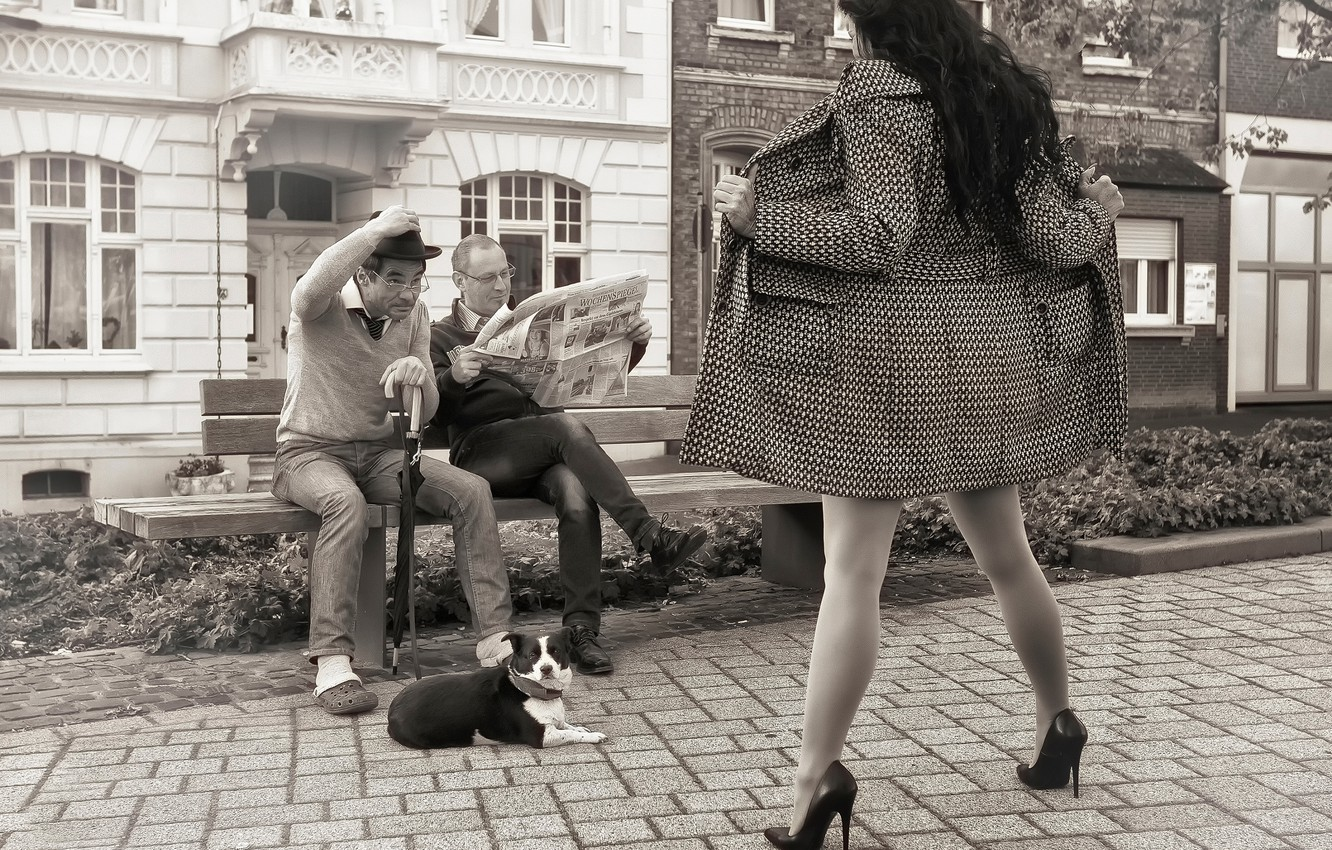 Photo wallpaper girl, bench, men, the show, dog, surprise, days like this