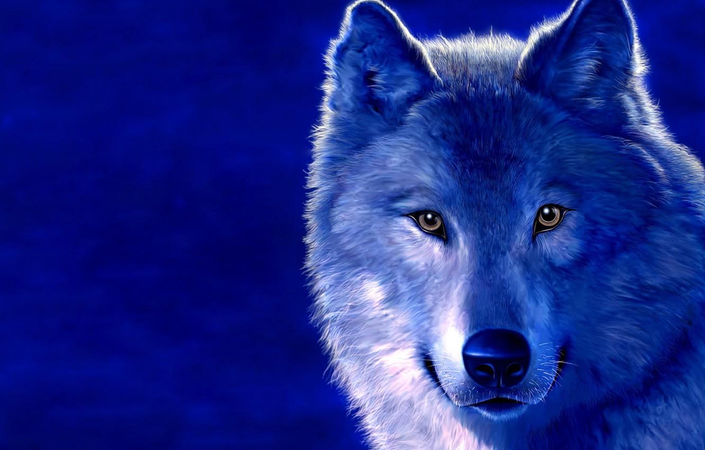 Photo wallpaper blue, figure, wolf