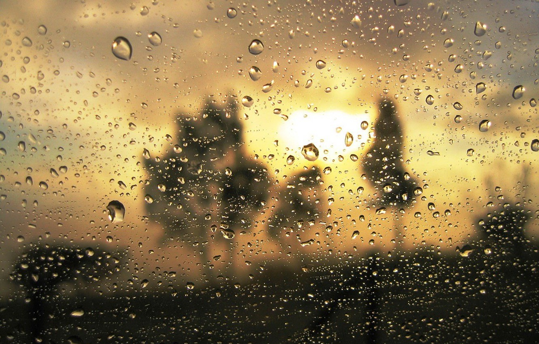 Photo wallpaper glass, drops, gold, turbidity, the proximity, rain