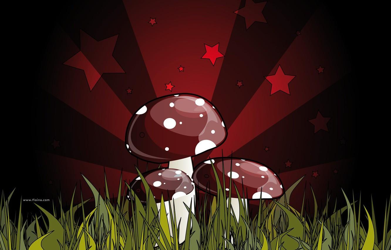Photo wallpaper red, green, figure, fatal, mushrooms, grebe. poisonous, mushroom, dark