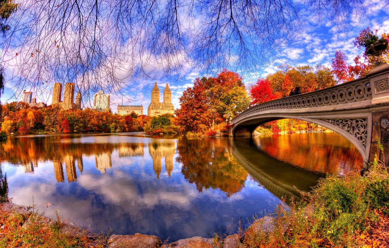 Photo wallpaper autumn, leaves, water, trees, bridge, nature, Park, reflection, trees, nature, bridge, water, park, autumn, view, …