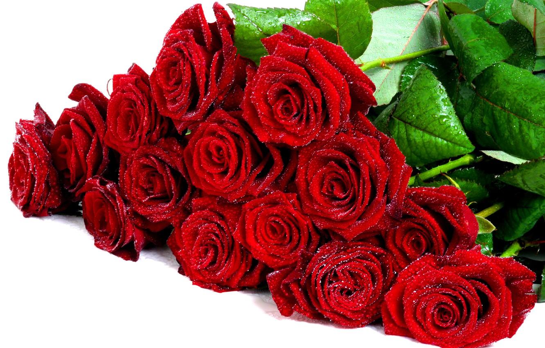 Photo wallpaper drops, flowers, romance, roses, beauty, bouquet, rose, beautiful, wet, I love you, flower, wet, well, …