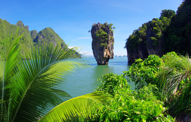 Photo wallpaper sea, trees, tropics, palm trees, rocks, shrubs