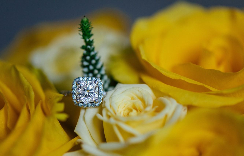 Photo wallpaper flower, stone, rose, ring, yellow petals