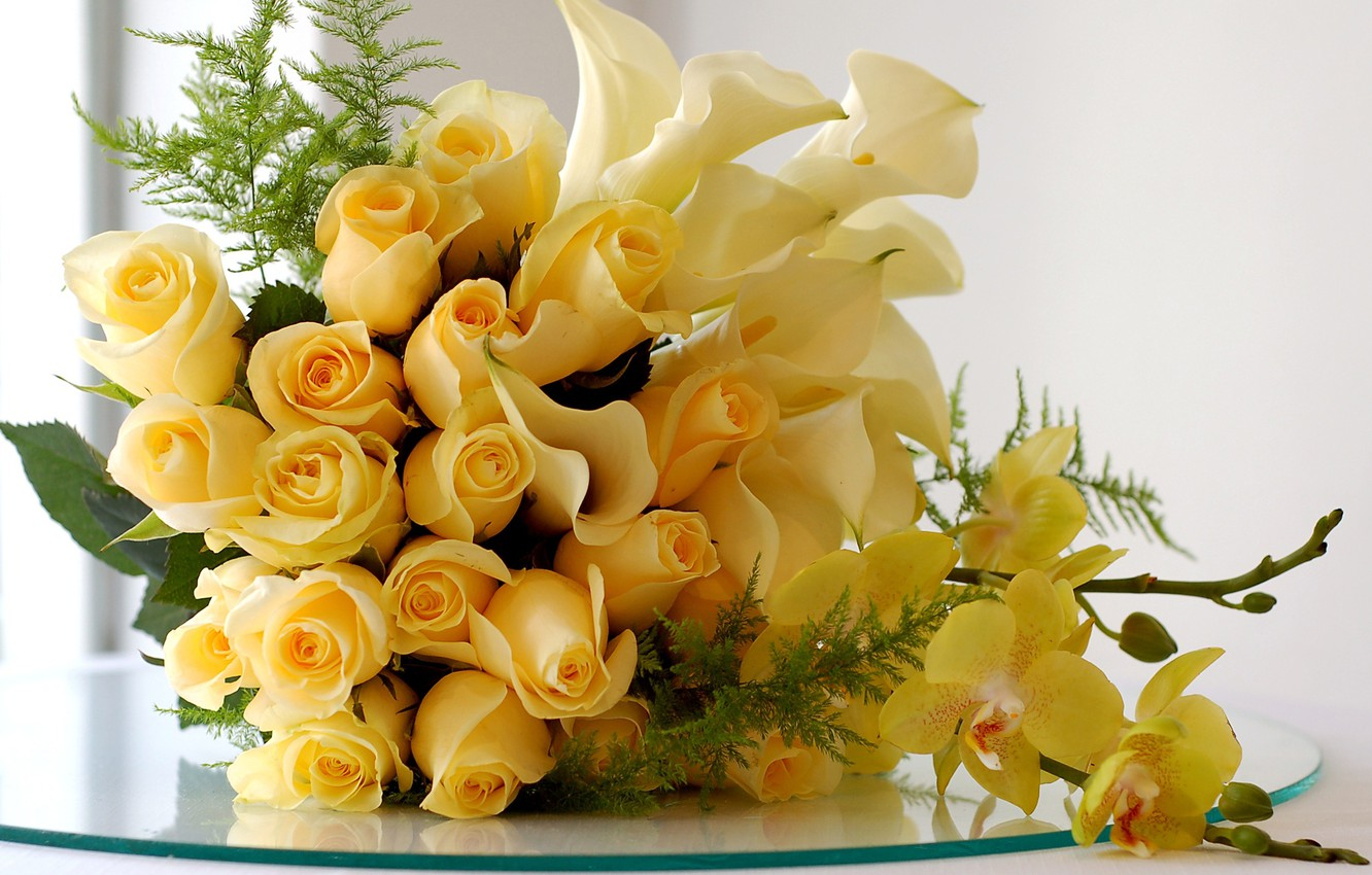 Photo wallpaper white, holiday, gift, roses, bouquet