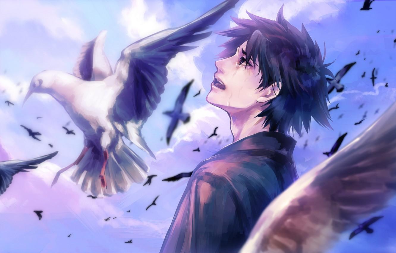 Photo wallpaper the sky, clouds, birds, anime, tears, art, guy, fate stay night, fate zero, emiya kiritsu …