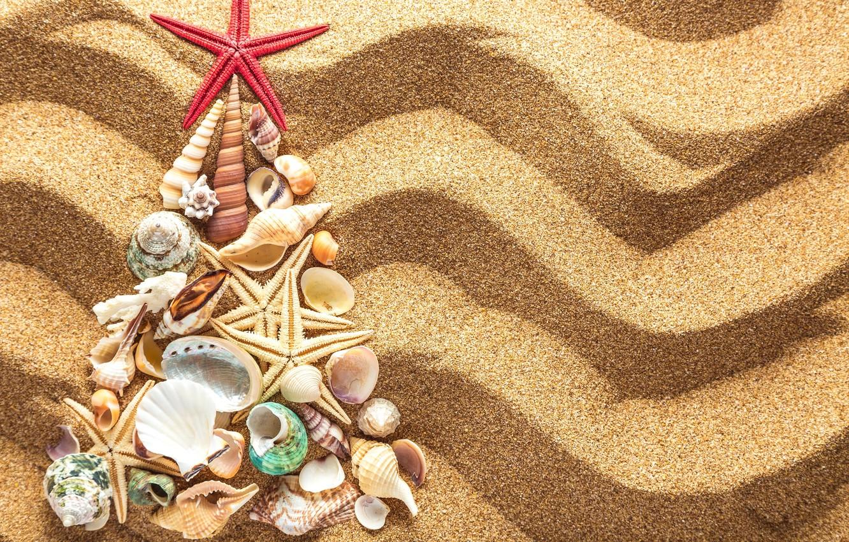Christmas Beach.Wallpaper Sand Decoration Tree New Year Shell Christmas