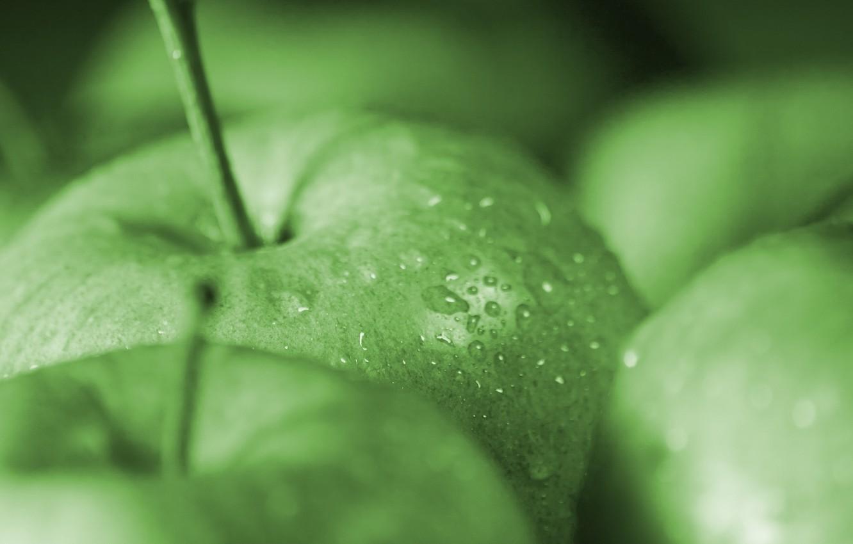 Photo wallpaper drops, macro, green, apples, apple, food, green, fruit, macro, drops, apples