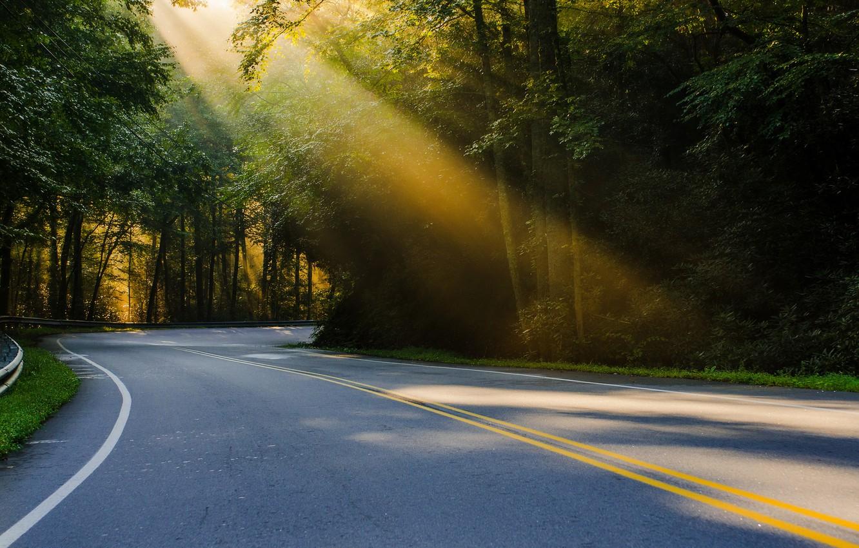 Photo wallpaper road, forest, summer, light, nature, USA, sun, North Carolina, regularjoe Photography