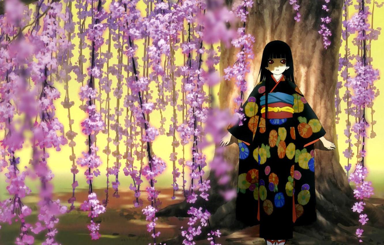 Photo wallpaper Sakura, girl, kimono