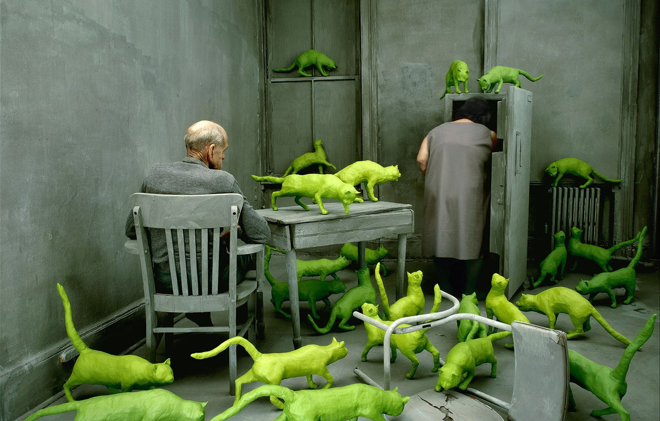 Photo wallpaper pair, obsessions, green cats, Sandy Skoglund, the grey room