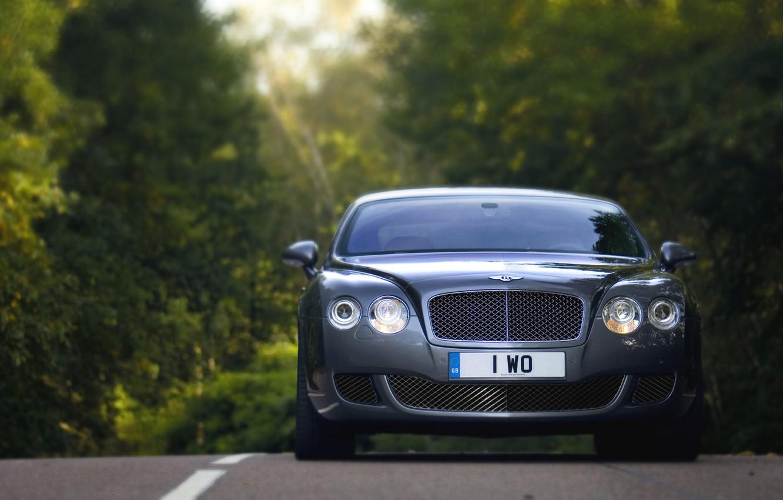 Photo wallpaper Auto, Bentley, Continental, Forest, grille, Machine, Logo, Grey, Lights, Car