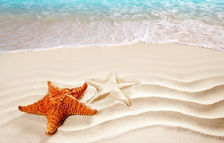 Photo wallpaper sand, sea, beach, silhouette, surf, starfish