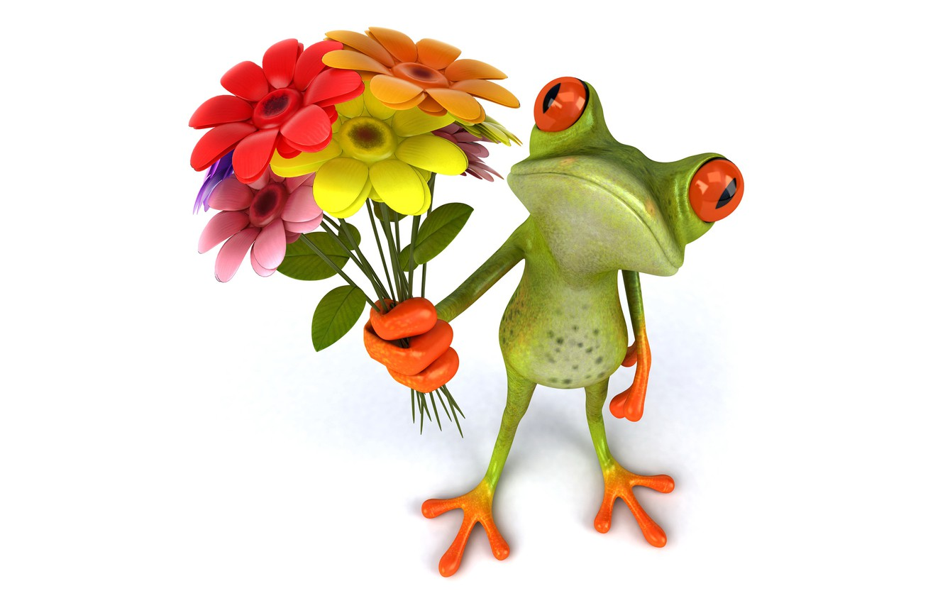 Photo wallpaper frog, frog, flowers, funny