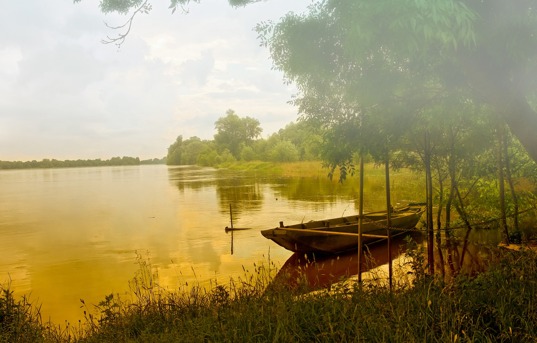 Photo wallpaper forest, fog, lake, boat