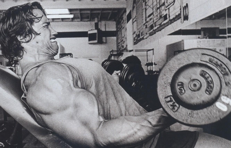 Photo wallpaper man, actor, Arnold Schwarzenegger, rocking, the gym, dumbbells, Arnold Schwarzenegger