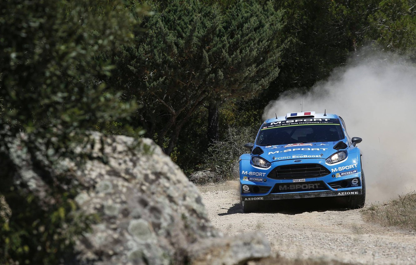 Photo wallpaper Ford, Ford, WRC, Fiesta, The front