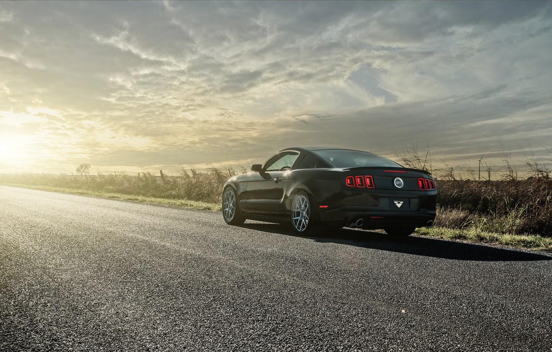 Photo wallpaper Mustang, Ford, black, road, 5.0, rear, sun