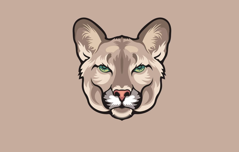 Photo wallpaper minimalism, head, Puma, puma