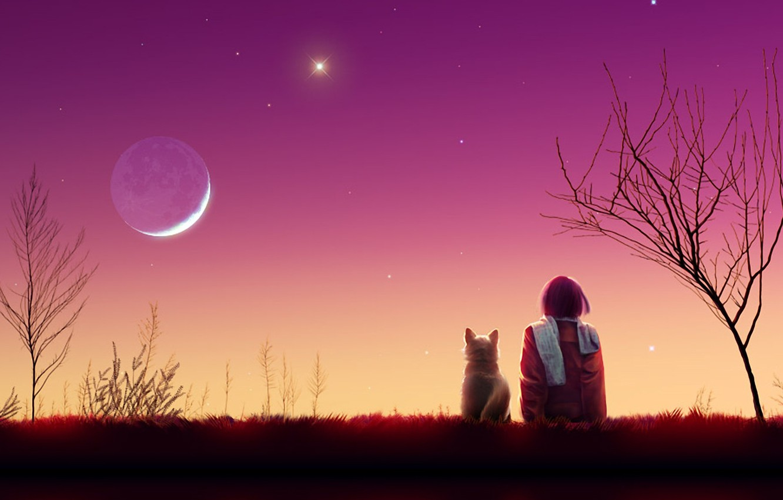 Photo wallpaper cat, girl, stars, trees, landscape, sunset, the moon, the evening, scarf, art